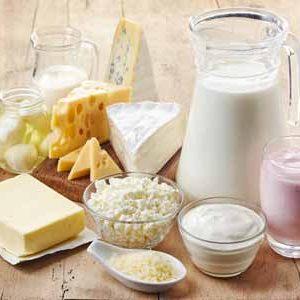 Food Conveyor Belts for dairy