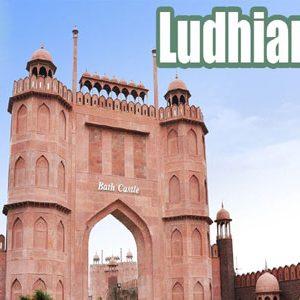 Food Grade Belts suppliers in Ludhiana