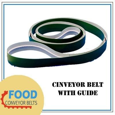 Conveyor Belt With Guide